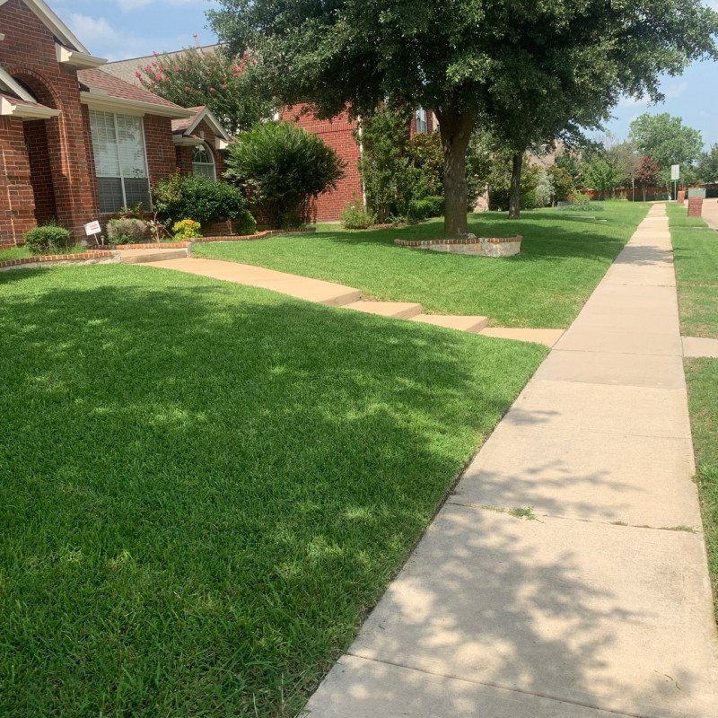 41 Best Lawn Care Mowing Services In Garland Tx 2019