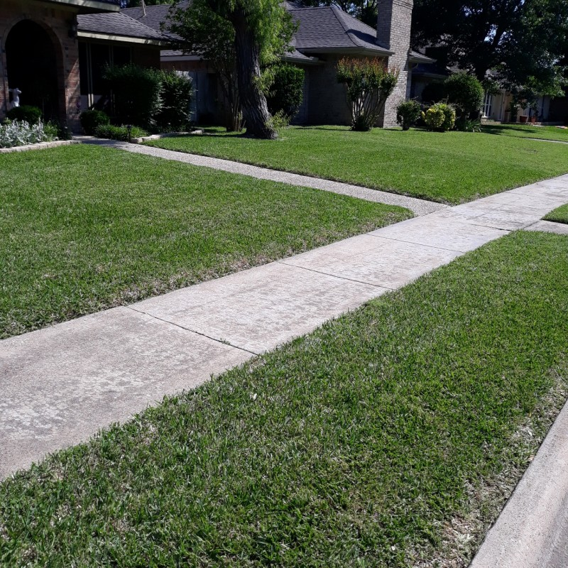 Lawn care service  in Garland TX