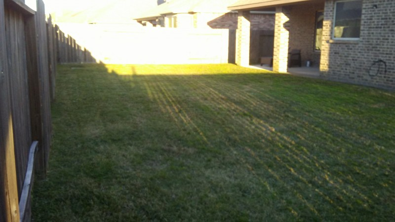 Lawn care service in Louisville KY